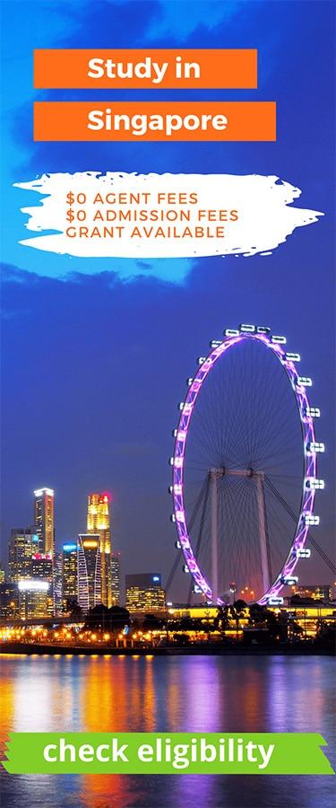 Singapore wheel in night sky
